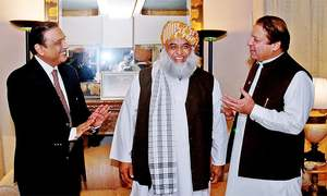 Fazl says no more interested in Nawaz-Zardari patch-up