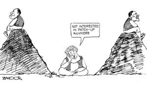 Cartoon: 8 February, 2019