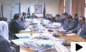 نیب نے 13 انکوائریوں،7 تحقیقات اور 3 ریفرنسز کی منظوری دے دی