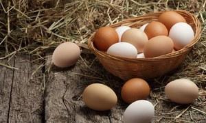 دیسی یا فارمی، کونسا انڈا زیادہ غذائیت سے بھرپور