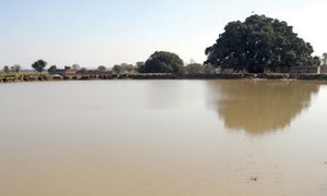 Neglected today, ancient ponds could help overcome water shortage