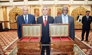 Luncheon for South African, Libyan envoys