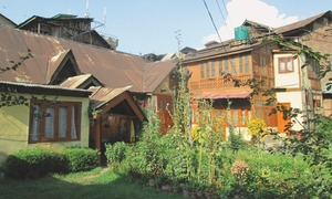 HERITAGE: UNDER THE CHINAR TREES