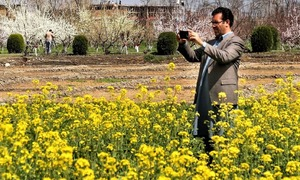 In pictures: Spring in Swat valley is a sight for sore eyes