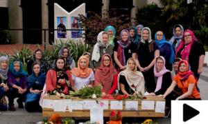 نیوزی لینڈ میں خواتین کا حجاب پہن کر مسلمانوں سے اظہار یکجہتی