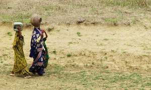 Climate change affects women more. What can the state do to intervene?
