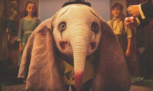 CINEMASCOPE: THE ELEPHANT IN THE ROOM