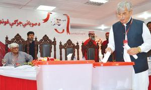 ANP new provincial chief vows to protect Pakhtuns' rights