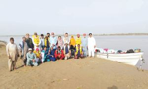 Survey finds increase in Indus dolphin population despite multiple threats