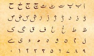 We teach Urdu in America. We learned we can't use Pakistani textbooks