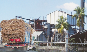 Sugar mills owners barred from selling properties