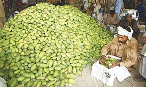 Mangoes missing from the market