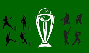 ورلڈ کپ مقابلوں میں پاکستانی کھلاڑیوں کے کارنامے