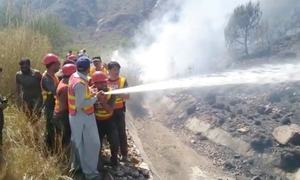 Fire destroys trees in Swabi mountains