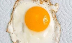 ایک دن میں کتنے انڈے کھانا صحت کے لیے فائدہ مند؟