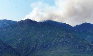 Fires continue to rage in Margalla Hills