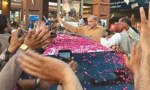 Shahbaz returns home after seven-week stay in UK