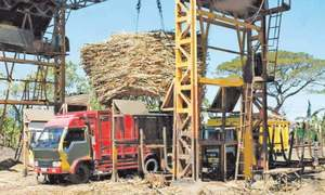 SC orders sugar mill owners to pay dues by Friday