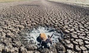 بڑھتا ہوا درجہ حرارت دنیا کو کہاں لے جائے گا؟