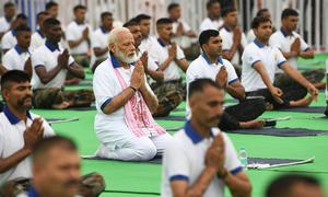 Modi and mutts on mats for International Yoga Day