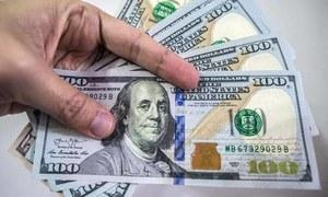 ایک عام پاکستانی کی زندگی سے ڈالر کا کتنا تعلق ہے؟