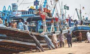 Fishermen return to the sea after ban lifted