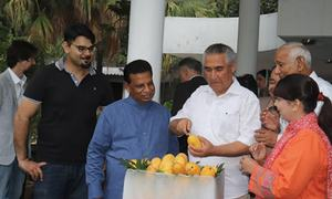Diplomats attend annual mango party