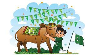 Meaningful celebrations