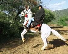 Pashto film industry to release four movies on Eid despite odds