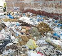MWMC fails to timely dispose of animal waste