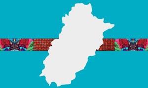 PTI's one year in Punjab