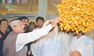 Over 60 stalls set up at dates festival in Khairpur