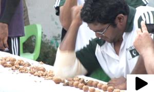 پاکستانی مارشل آرٹ ماسٹر کے ورلڈ ریکارڈز کی نصف سنچری مکمل