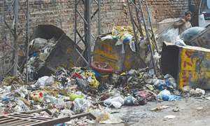 Mounting complaints about Lahore's garbage problem