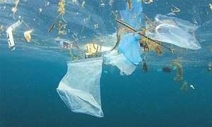 کیا پلاسٹک بیگ ہی سب سے بڑا ماحولیاتی مسئلہ ہیں؟