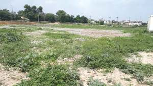 Citizens in Chakwal want to convert Shamlat land into park