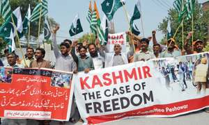 Rallies held to express solidarity with Kashmiris