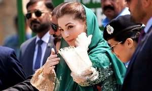 مریم نواز مسلم لیگ (ن) کی نائب صدر برقرار، پی ٹی آئی کی درخواست خارج