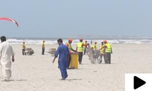 کراچی میں ساحل سمندر پر خصوصی صفائی مہم کا آغاز