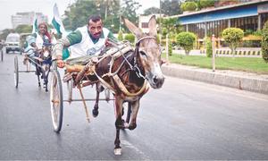 کراچی کے ڈونکی راجے