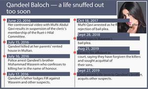 Brother gets life for murder of social media star Qandeel