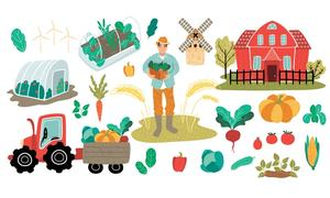 AGRICULTURE: Organic farming needs attention
