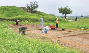 Experience: Archaeologist for a day