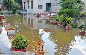 Students fear dengue spread after sewage, rainwater inundate college