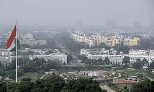 Indian capital's air quality plunges despite new measures