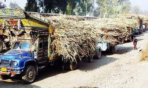 Talks with minister on fixing of sugar cane price remain inconclusive