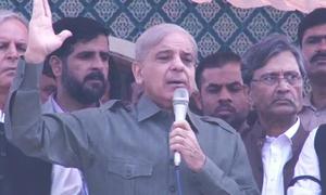 Continuing political disputes to spell doom for Imran: Shahbaz