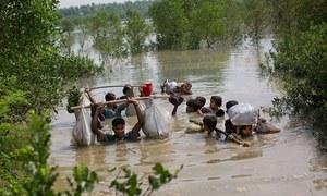 روہنگیا مسلمانوں کی نسل کشی پر میانمار کے خلاف عالمی عدالت میں کیس