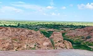 SHC stays excavation of stone in Karoonjhar hills
