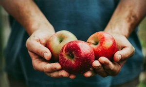 پیٹ اور کمر کے ارگرد چربی گھٹانے میں مدد دینے والی غذائیں